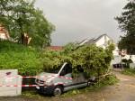 Ein umgestürzter Baum liegt auf einem Auto